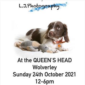 Queens Head pet photos