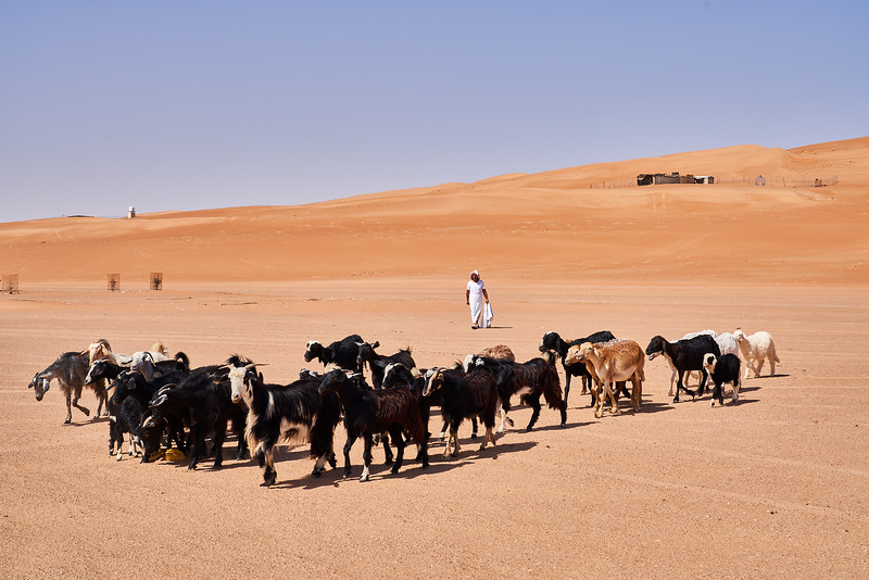 Oman_DSC00052.jpg