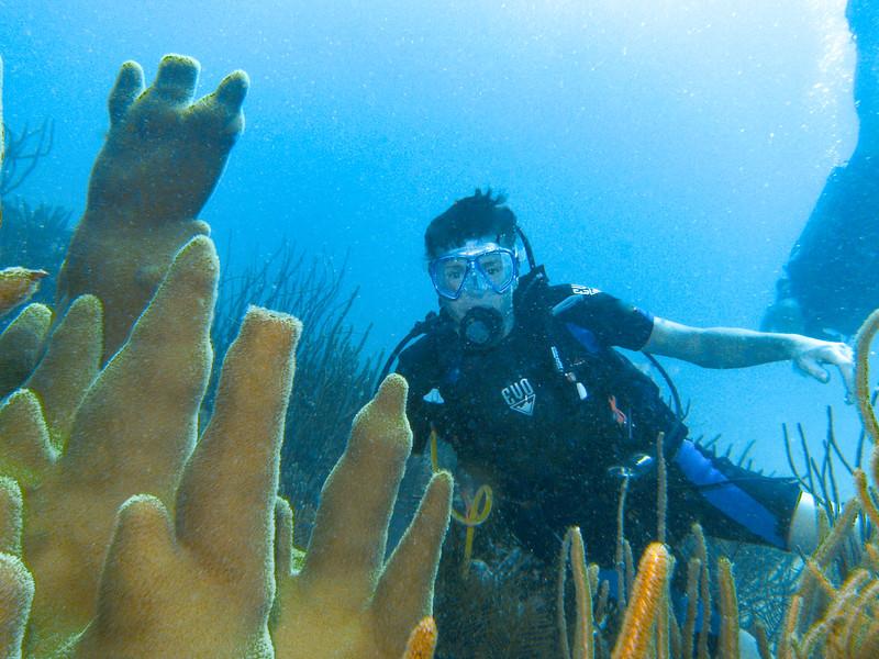 Dive Puerto Rico = Feb., 2013-Puerto Rico Dive Feb 2013-100-015.jpg