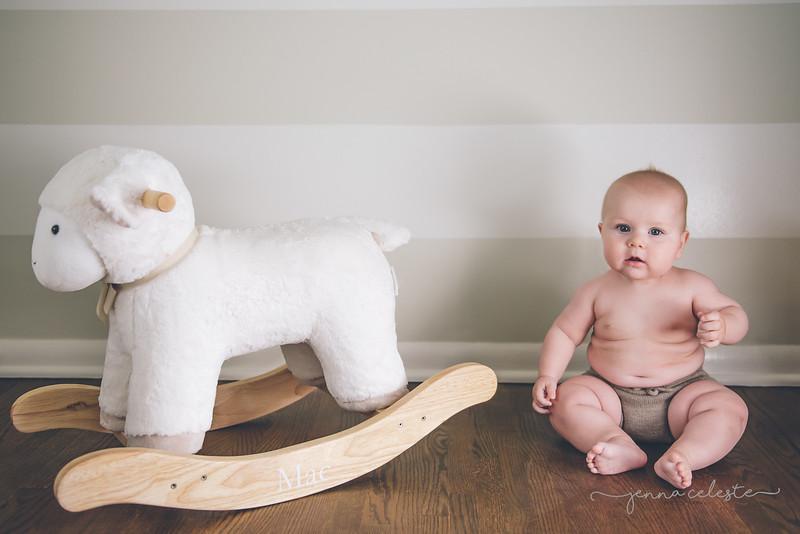wm Mac Anderson 6 month infant newborn fresh48 northfield faribault owatonna minneapolis st paul infant baby birth newborn photography photographer-3.jpg