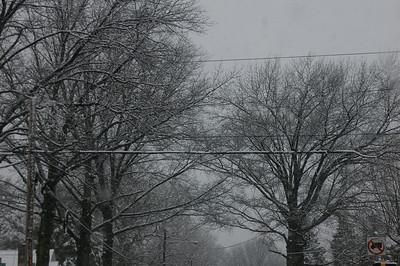 Late Spring Snow 3 25 13
