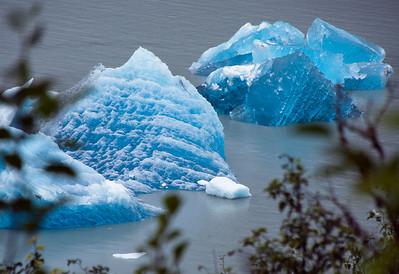Alaska August 2011
