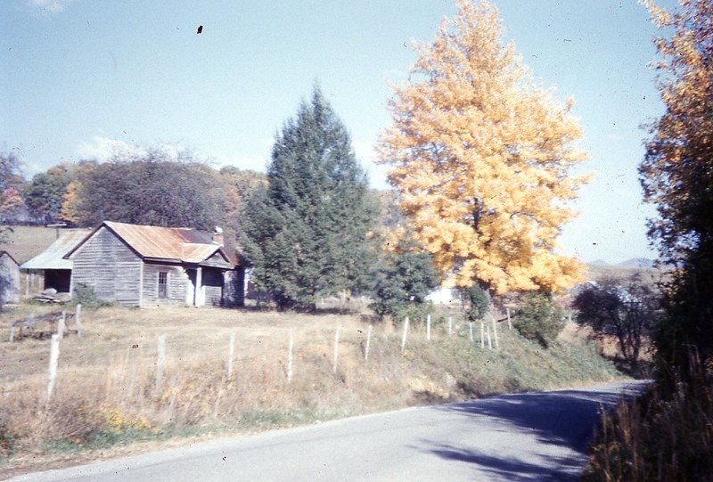 1959 - Autumn on way to Jonesville.jpg