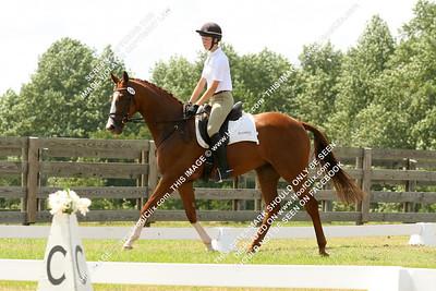 2010-08-29 USEA Horse Trial