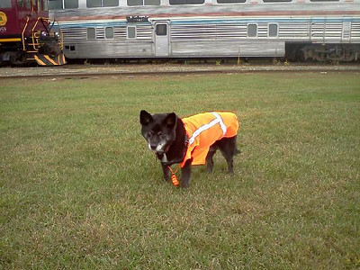 Vest and whistle today as Reagan works as flagman.  Sept 2012
