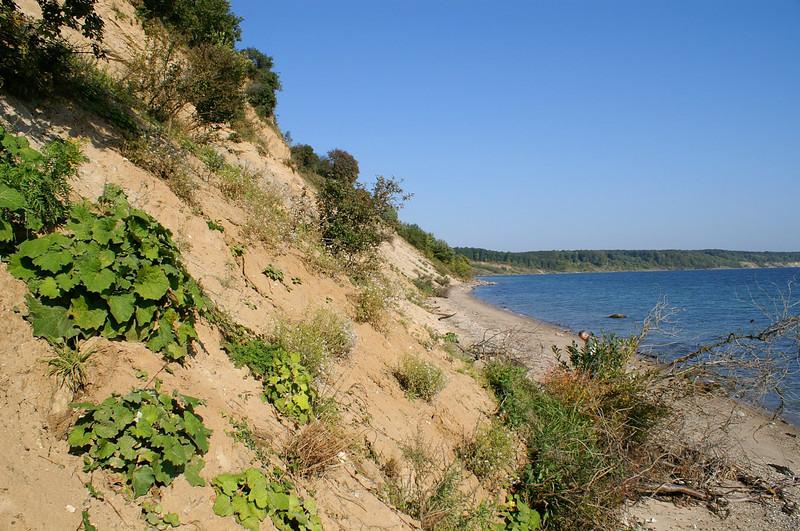 Trelde Landskabspark-0003.jpg