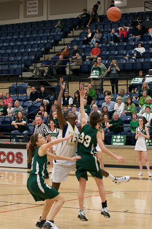 WCS Lady Wildcats - State Semifinals