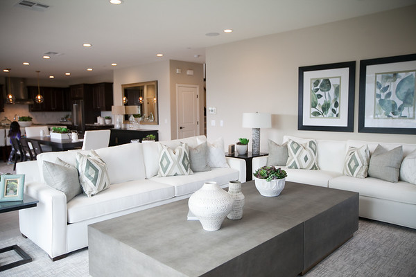 Whittingham Model Home Grand Opening