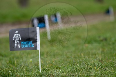 CHARITY GUNDOG DAY  IN AID OF PROSTATE CANCER UK