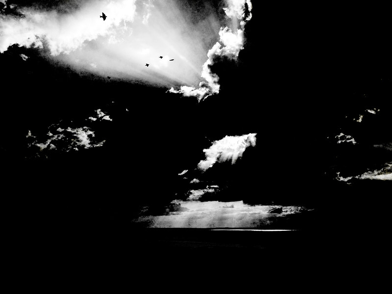 Leaving - Chris Friel