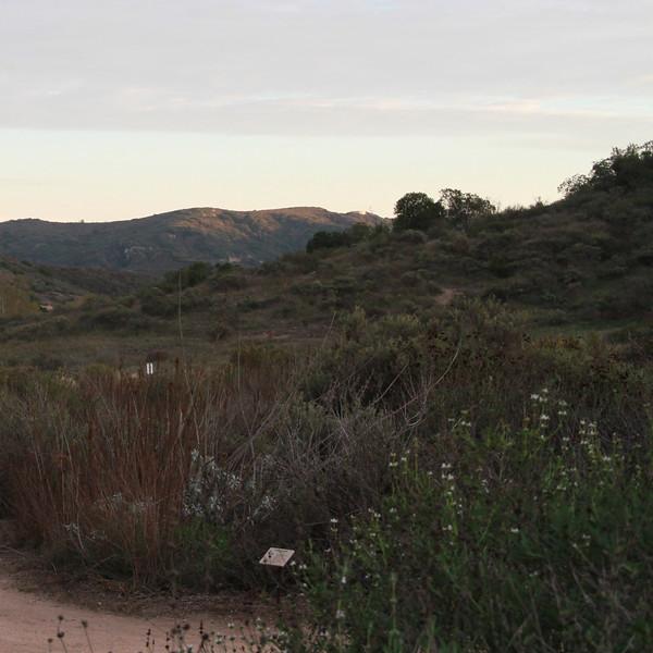 Laguna-Canyon-Foundation-25th-Anniversary-Celebration-Jesse-Brossa_186.jpg