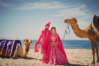 Lira & Omesh Wedding