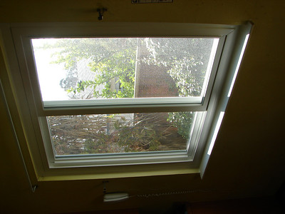 Our new windows 2009