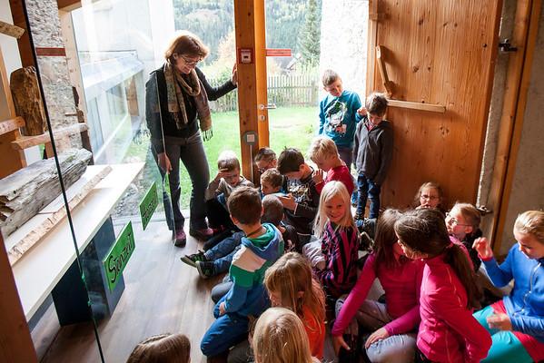 Holz macht Schule