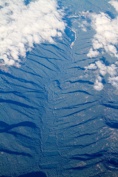 Aerial view of forested river valley in Oregon landscape - USA -