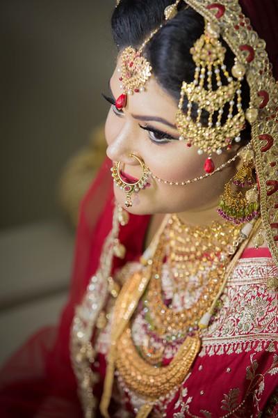 Nakib-00021-Wedding-2015-SnapShot.JPG