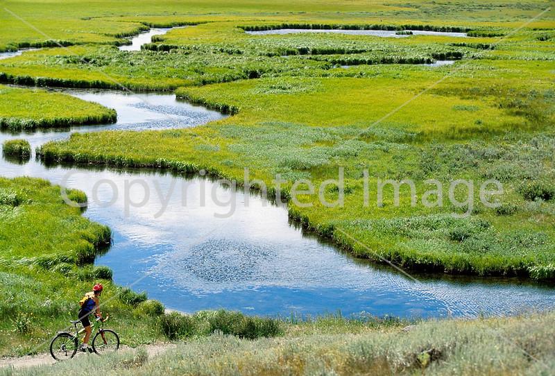 Yellowstone - Cyclists & Scenics