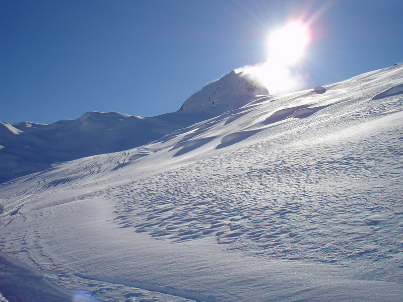 Alaska 2008 344.jpg