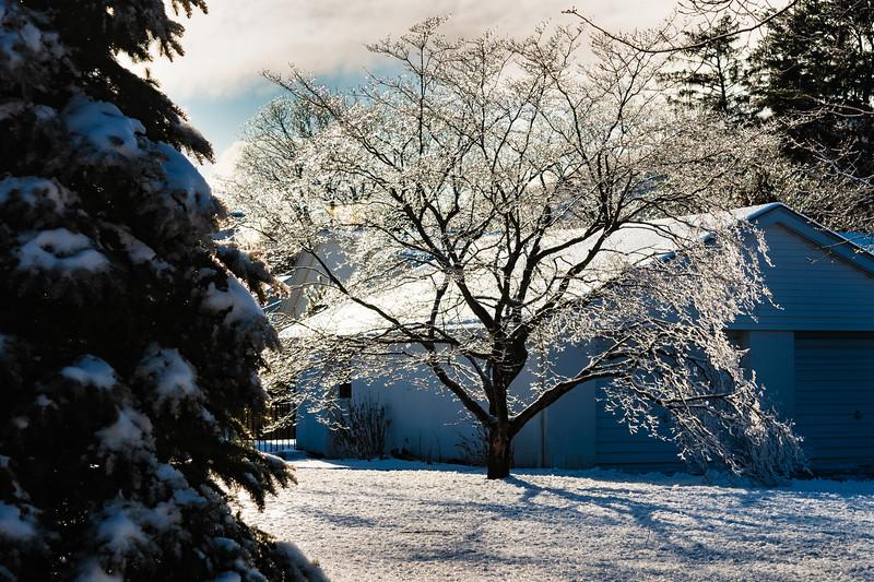 icestorm (9 of 13).JPG