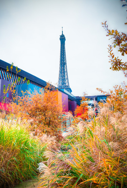 Eiffel Tower from the Musée du Quai Branly