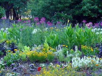 Botanicals: Gardens
