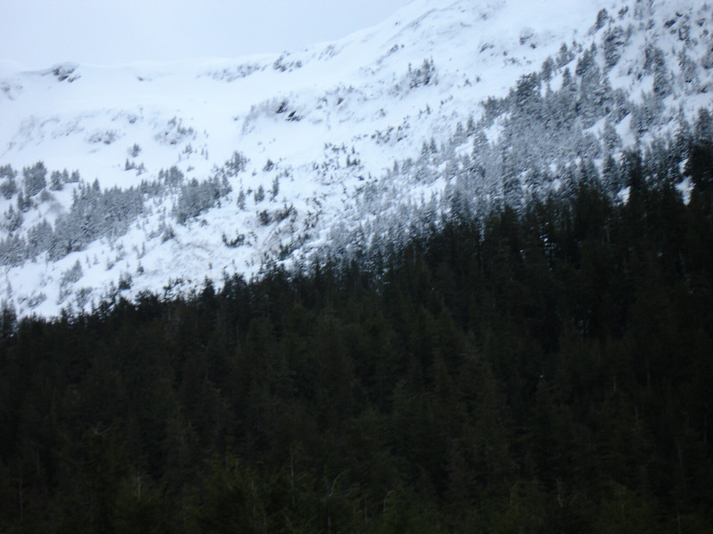 Alaska 2008 050.jpg