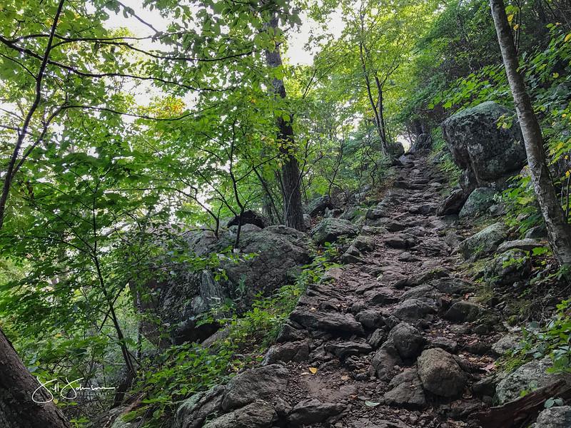at hike-8931.jpg
