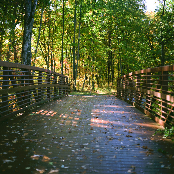 Autumn Hike 120 Film-00040.jpg
