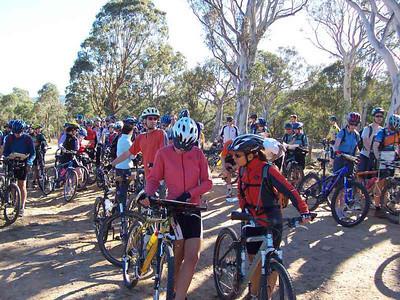 2007 Cyclegaine