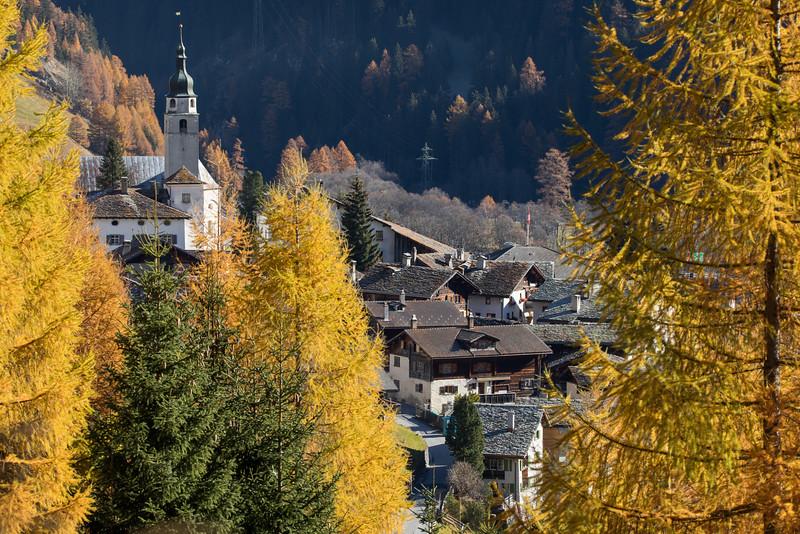 Herbst-im-Rheinwald--6.jpg