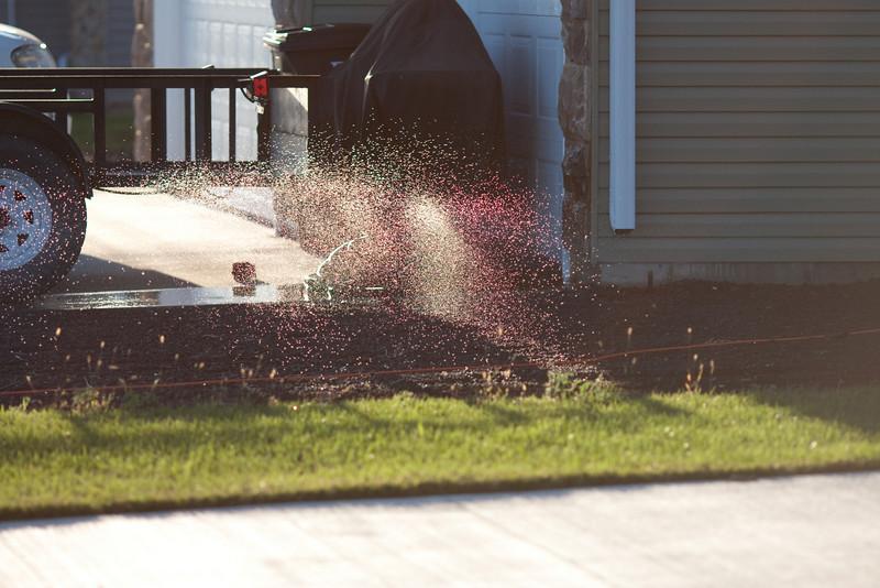 Neighbor's sprinklers
