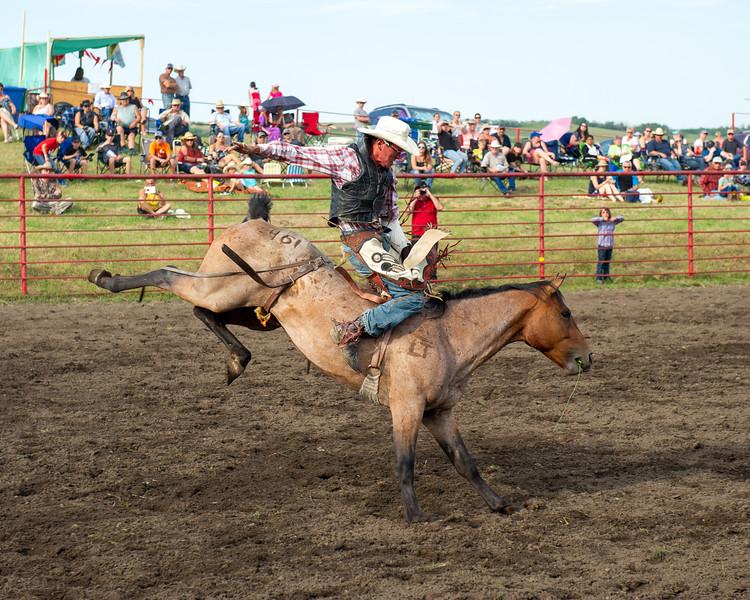 Rodeo_tests-009.jpg