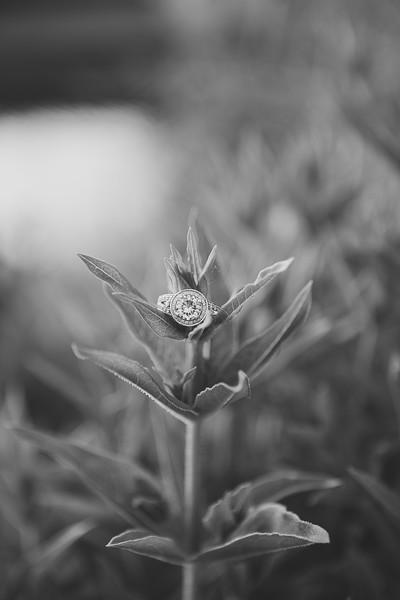Bridals-444.jpg
