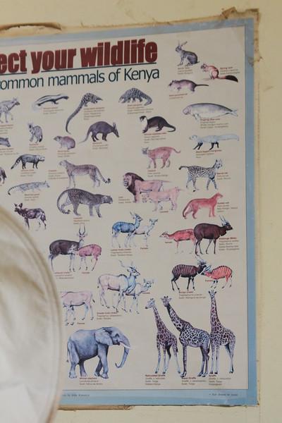 Kenya Part2 '15 894.JPG