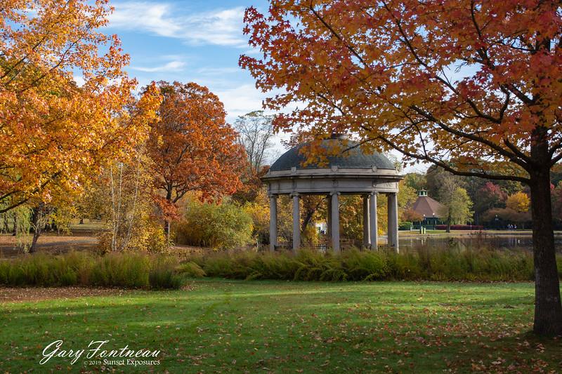 Fall Foliage-3955.jpg