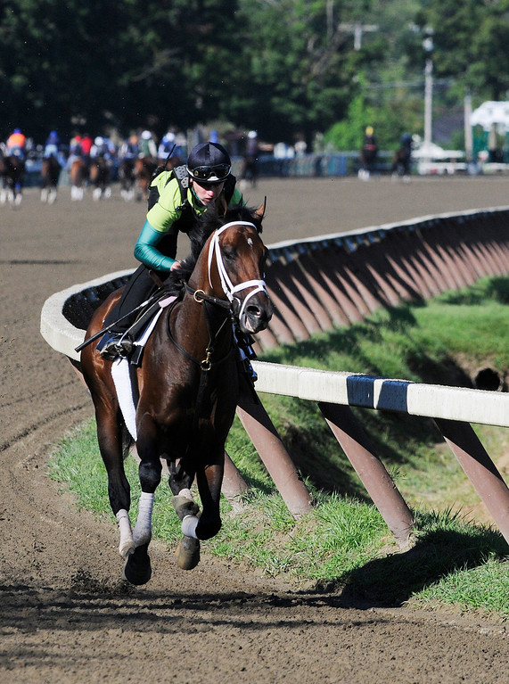 . Exercise Rider Jake Nelson atop Palace Malice breezed on Sunday morning, trained by Todd Pletcher from Dogwood Stables, set to run in Travers Stake at Saratoga Race Course.Photo Erica Miller/The Saratogian 8/11/13 spt_PalaceMalice1