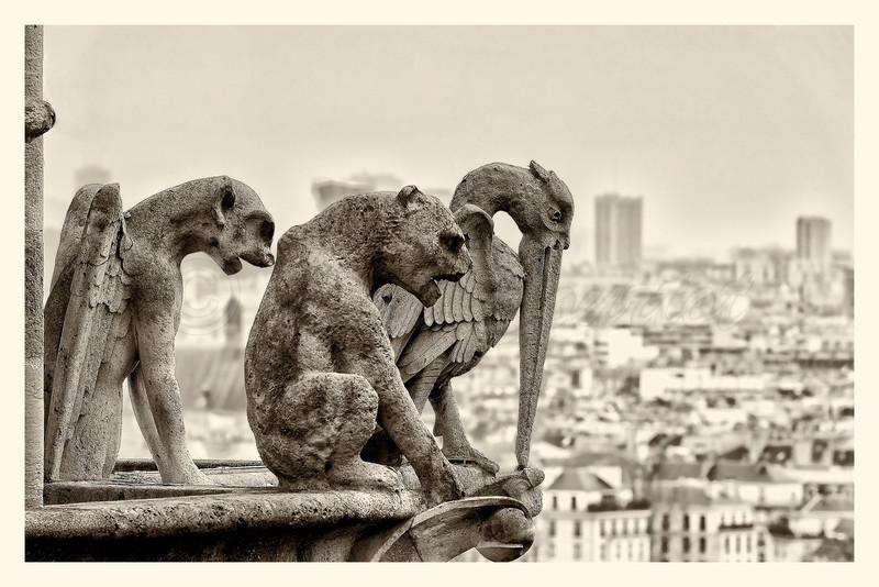 Notre-Dame_20150219_0101-.jpg