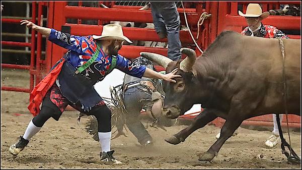 2021 Bull Feb 5