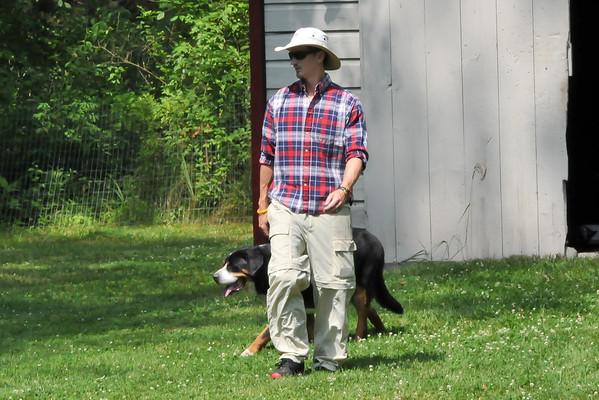 Doggone Farm
