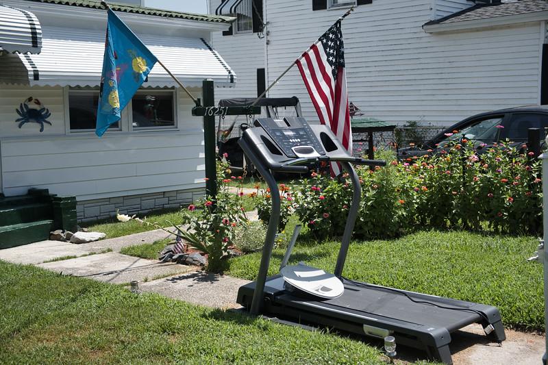 Exercise Yard