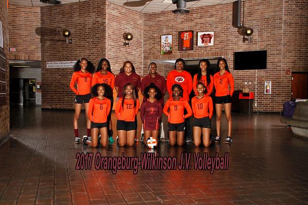 2017 JV Volleyball