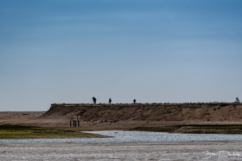 Twitchers and Photographers at the entrance to Pagham Harbour