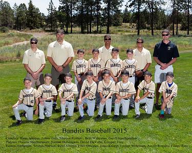 Bandits 2015 Team Photo