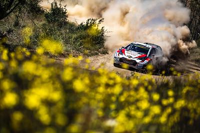 WRC Rally Portugal 2019