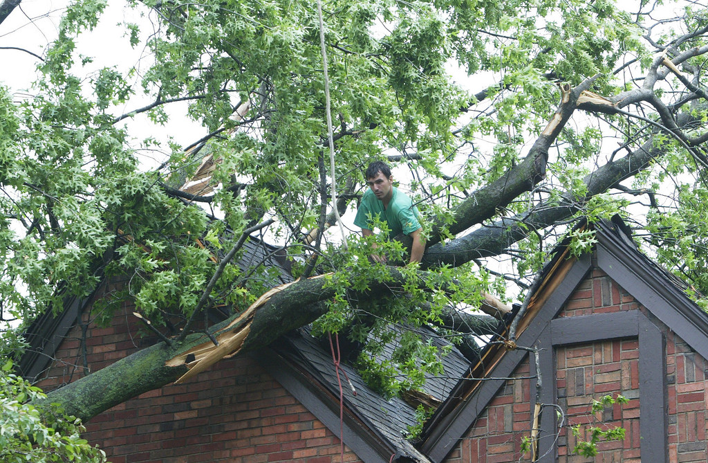 . Michael Furlow, of Ahlers Tree Service, Inc., of Edwardsville, Ill.,wraps a line around a fallen tree Saturday morning June 1, 2013 so it can be hoisted by crane off a home at 1239 St. Louis Street in Edwardsville, Ill that sustained damage from straight line winds. (AP Photo/The Telegraph, Margie M. Barnes)