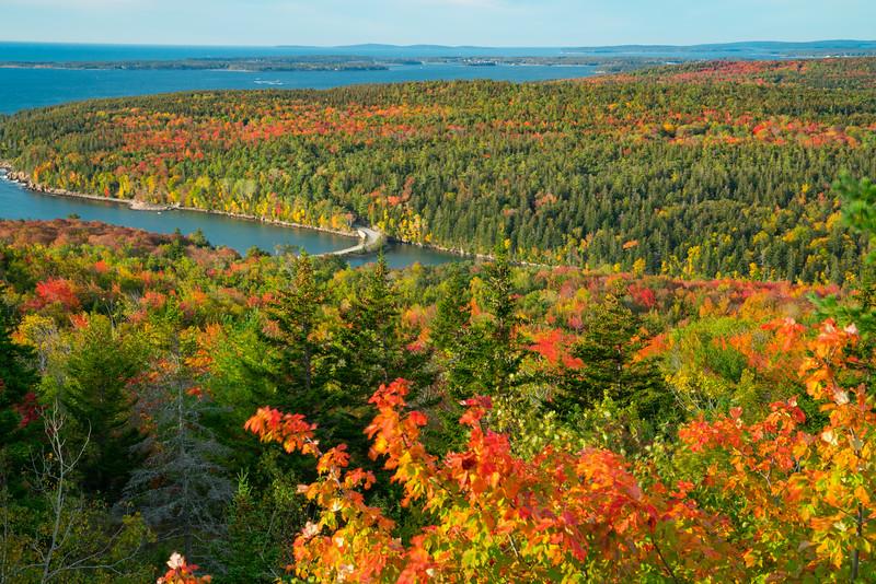 Acadia NP Fall 2019-34.jpg