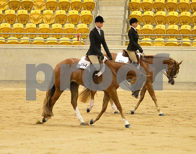 Hunt seat equitation & Hunter under saddle
