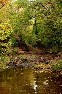 Lanana Creek041