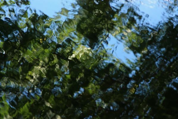 Monadnock-Sunapee Greenway Trail -  2014