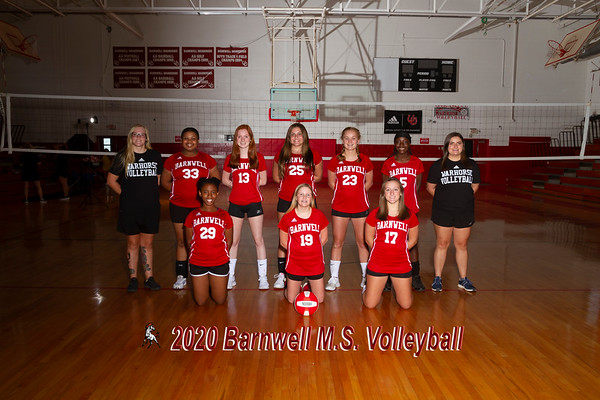 2020 MS Volleyball